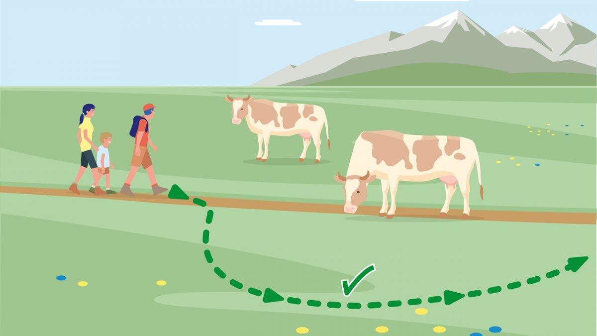 Adfærdstip nr. 6, © Landwirtschaftskammer Tirol